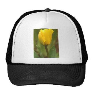 Yellow Tulip Mesh Hat