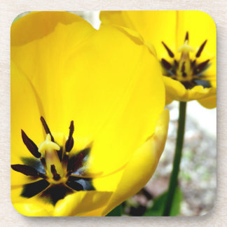 Yellow Tulip Hard Plastic Coasters