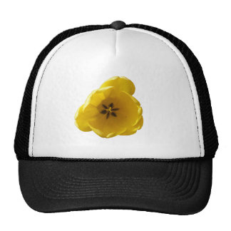 Yellow Tulip Hat