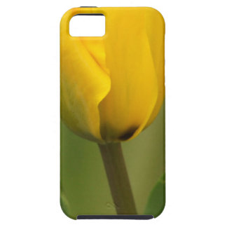 Yellow Tulip iPhone 5 Cover