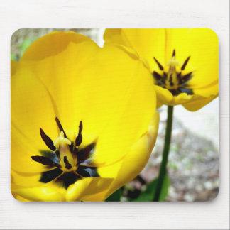 Yellow Tulip Mouse Mat