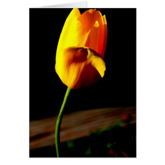 Yellow Tulip Notecard Note Card