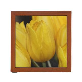 Yellow Tulip photo Pencil/Pen Holder