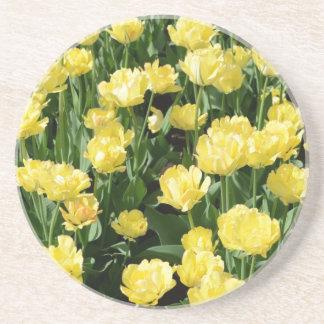 Yellow Tulips Beverage Coasters