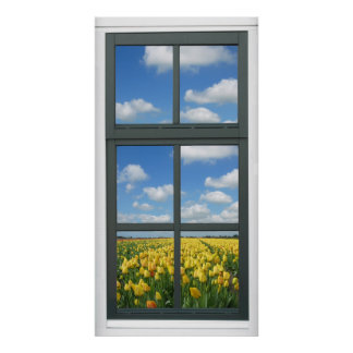 Yellow Tulips Blue Sky Spring Window View Poster