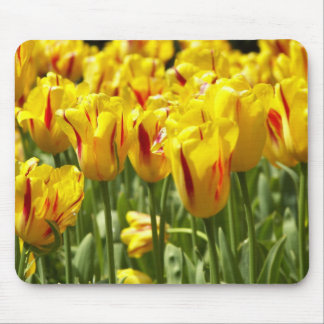 Yellow Tulips Floral Mouse Mat