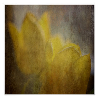 Yellow Tulips Flowers Rustic Floral Art Poster