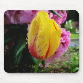 yellow tulips rain drops mousepads