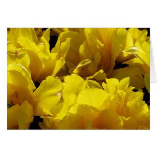 Yellow Tulips Through Sunbeams Note Card