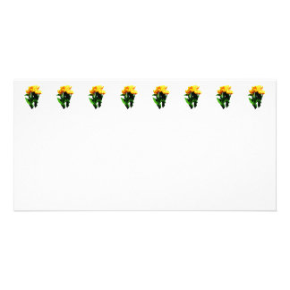 Yellow Tulips With Red Stripes Photo Cards