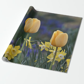 Yellow tulips wrapping paper