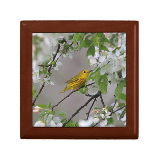 Yellow Warbler and Spring Blossoms Gift Box