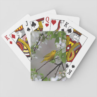 Yellow Warbler and Spring Blossoms Playing Cards