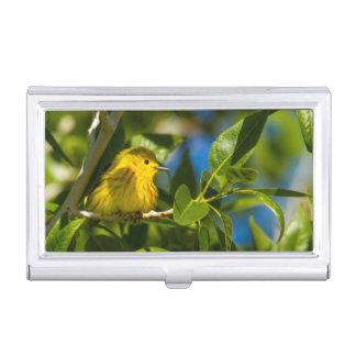 Yellow Warbler In Tree Near Augusta, Montana Business Card Holder