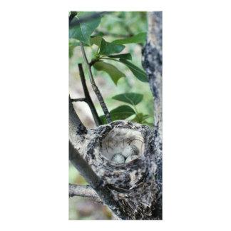 Yellow warbler nest with eggs custom rack card