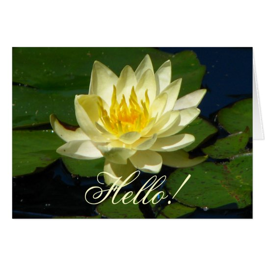 Yellow Waterlily Greeting Card