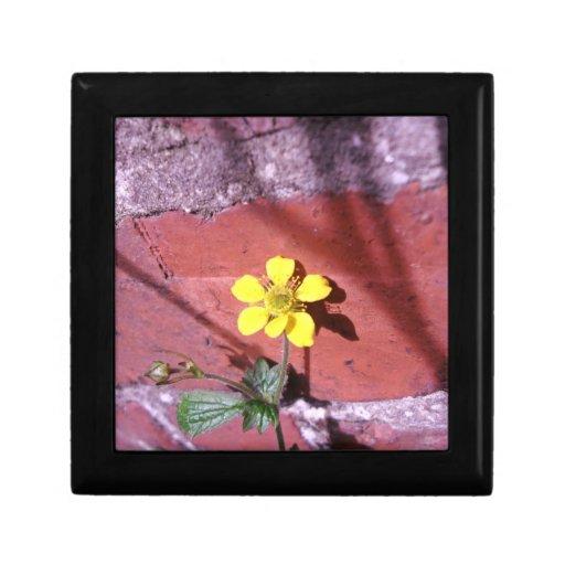 Yellow Weed flower Jewelry Box