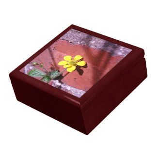 Yellow Weed flower Gift Boxes