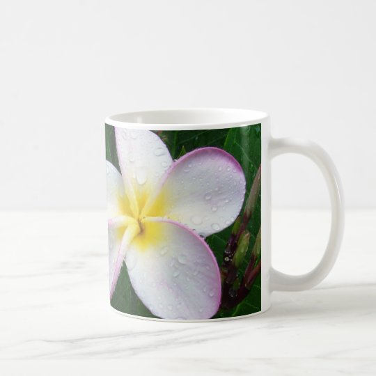 Yellow White & Purple Hawaiian Plumeria Flower Mug