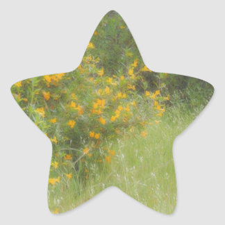 Yellow wildflower and grass personalizable star sticker