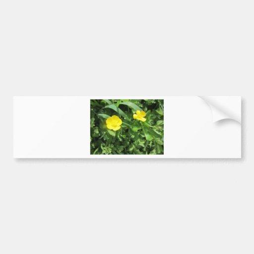 Yellow Wildflower Bumper Stickers