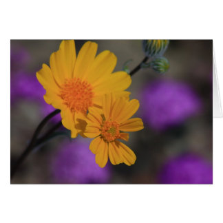 Yellow Wildflower Card