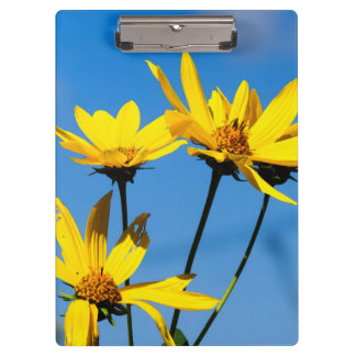 Yellow Wildflower Clipboard