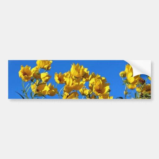 Yellow Wildflowers Bright Sky Bumper Stickers