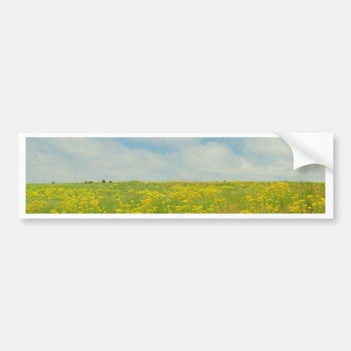 Yellow Wildflowers Bumper Stickers