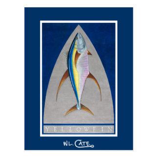 Yellowfin Postcards