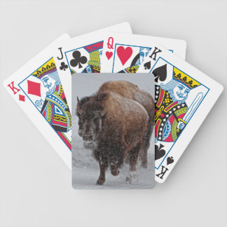 Yellowstone Bison Bicycle Playing Cards