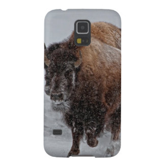 Yellowstone Bison Galaxy S5 Case