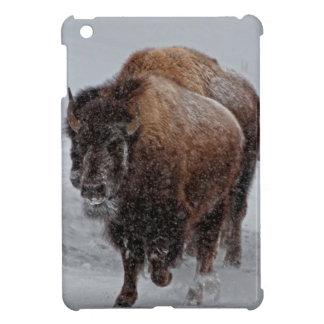 Yellowstone Bison iPad Mini Cases