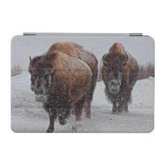 Yellowstone Bison iPad Mini Cover