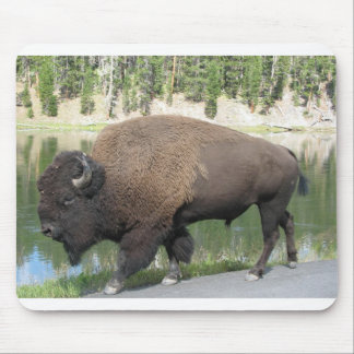 Yellowstone Bison Mouse Mat
