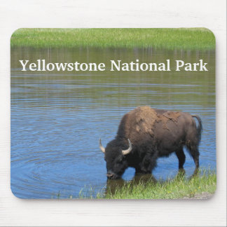 Yellowstone Buffalo in Pond Mouse Pad
