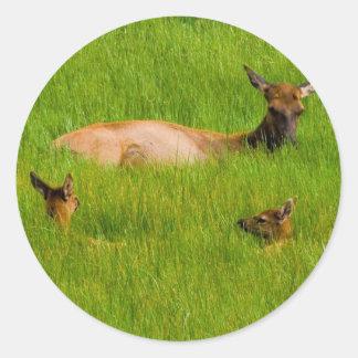 Yellowstone Elk Round Sticker
