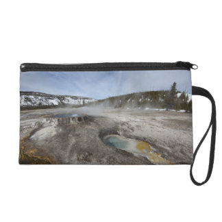 Yellowstone is famous for its geothermal wristlet