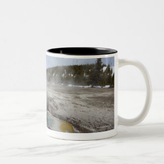 Yellowstone is famous for its geothermal mugs