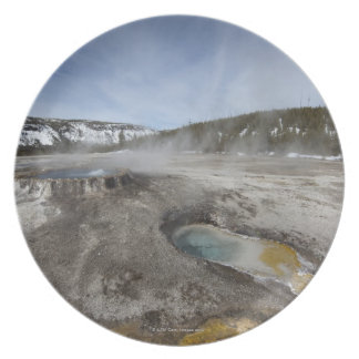 Yellowstone is famous for its geothermal plates