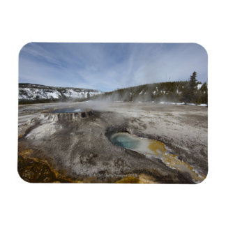 Yellowstone is famous for its geothermal rectangle magnet