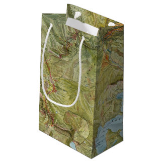 Yellowstone National Park 2 Small Gift Bag