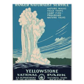 Yellowstone National Park Art Photo