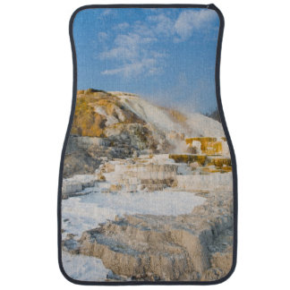 Yellowstone National Park Car Mat