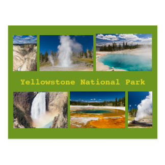 Yellowstone National Park Collage Postcard