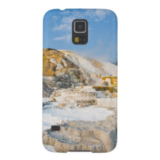 Yellowstone National Park Galaxy S5 Covers