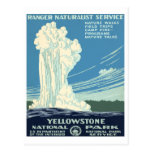 Yellowstone National Park Post Card
