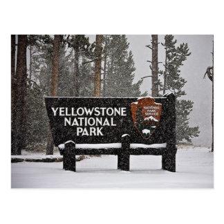 Yellowstone National Park Sign Postcard