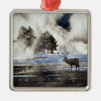 Yellowstone National Park Silver-Colored Square Decoration