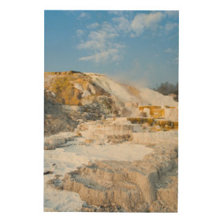 Yellowstone National Park Wood Print